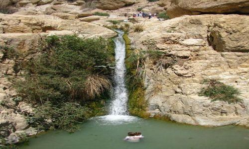 IZRAEL / Morze Martwe / Ein Gedi / Park Narodowy Ein Gedi