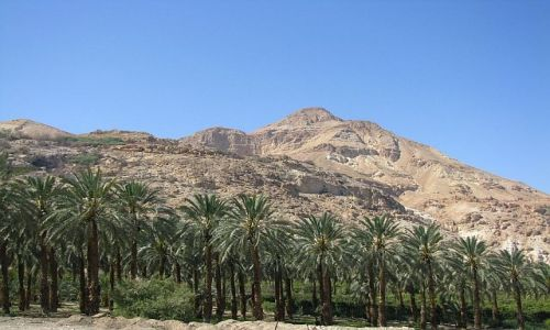 IZRAEL / Morze Martwe / Park Narodowy Ein Gedi / panorama