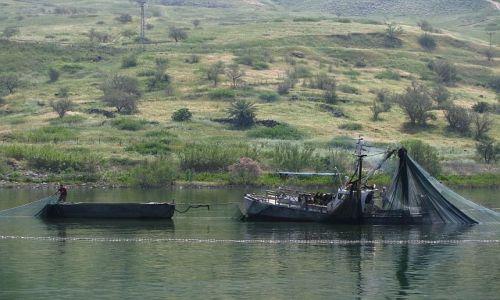 IZRAEL / Galilea / jezioro Genezaret / połów ryb