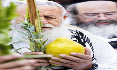 Zdjecie IZRAEL / Jerozolima / Ściana Płaczu  / Błogosławieństw