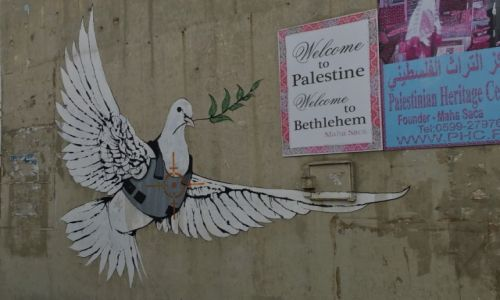 Zdjecie IZRAEL / Betlejem / Betlejem / gołąb