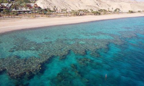 Zdjecie IZRAEL / Eilat / Eilat / koralowce