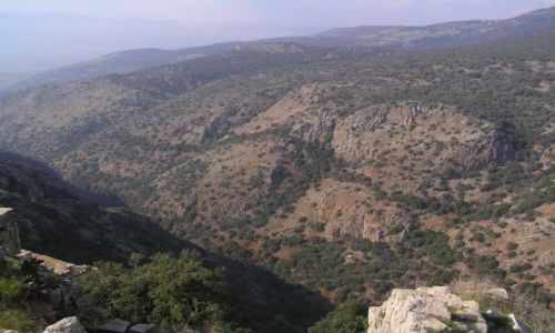 Zdjęcie IZRAEL / Wzgórza Golan / Wzgórza Golan / Wzgórza Golan