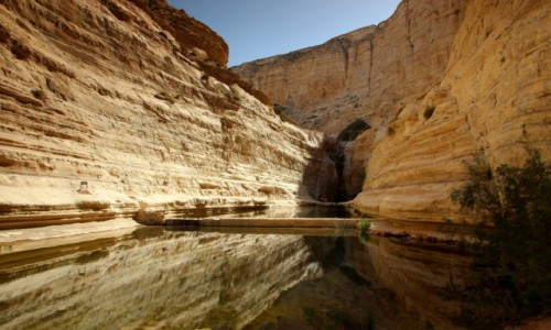 Zdjęcie IZRAEL / Negev Desert / Ein Avdat / Refleks
