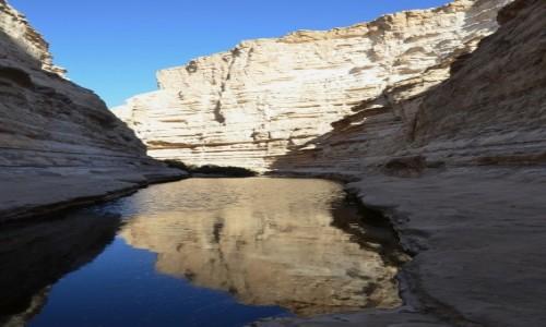 Zdjecie IZRAEL / Pustynia Negew / Avdat Canyon / u żródła...