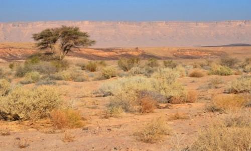 IZRAEL / Pustynia Negew / Maktesz Ramon / ochrą malowane...