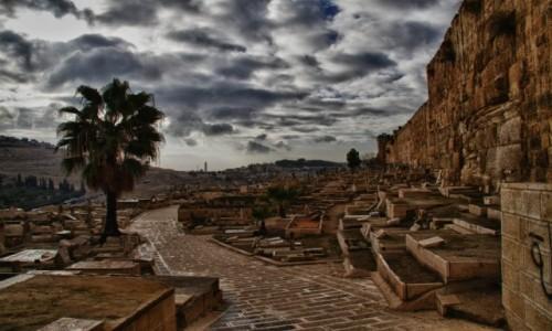 Zdjęcie IZRAEL / - / Jerozolima / Cmentarz pod murami
