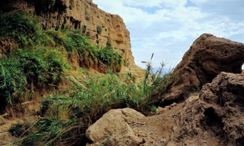 IZRAEL / Morze Martwe / Ein Gedi / Okolice wodospadu Davida