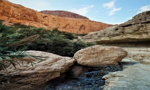 IZRAEL / Morze Martwe / Ein Gedi / Formy i barwy
