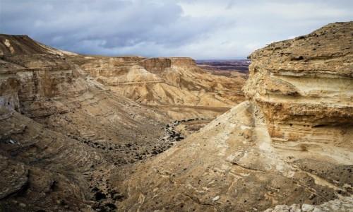 Zdjęcie IZRAEL / Pustynia Negew / .Park Narodowy Avdat  / Wąwóz
