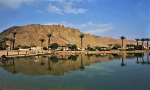Zdjęcie IZRAEL / Eilat / Timna Park / Oaza