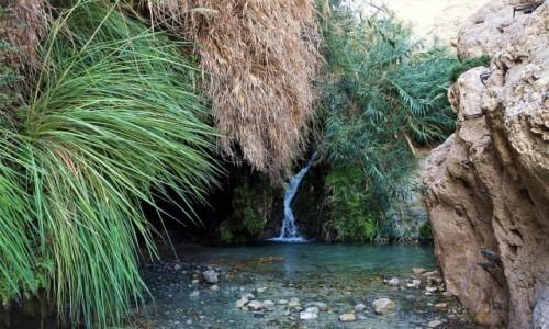 IZRAEL / Morze Martwe / Ein Gedi / Zejście do jaskini
