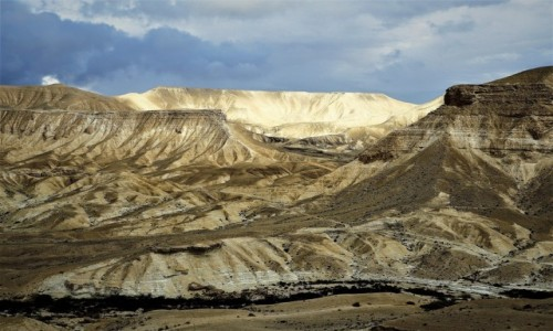 Zdjecie IZRAEL / Pustynia Negew / Mitzpe Ramon / Barwy i formy