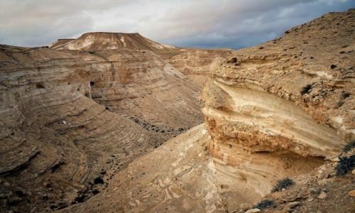 Zdjęcie IZRAEL / Pustynia Negew  / Park Narodowy Avdat / Przekroje
