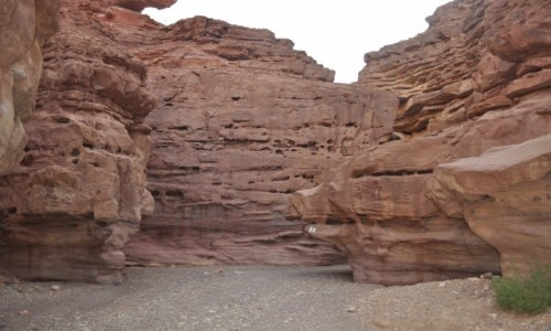 Zdjecie IZRAEL / Eilat / Eilat / Czerwony Kanion Izrael