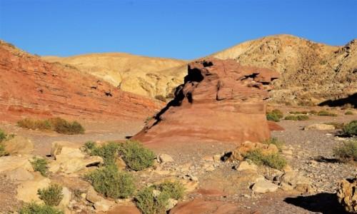 IZRAEL / Eilat / Czerwony Kanion / Kolorowo
