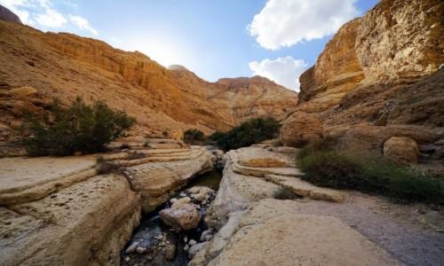 Zdjęcie IZRAEL / Morze Martwe / Wadi Arugot / W korycie rzeki