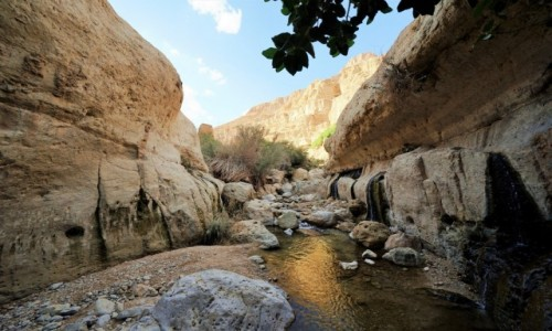 IZRAEL / Morze Martwe /  Wadi Arugot / Słońce w korycie