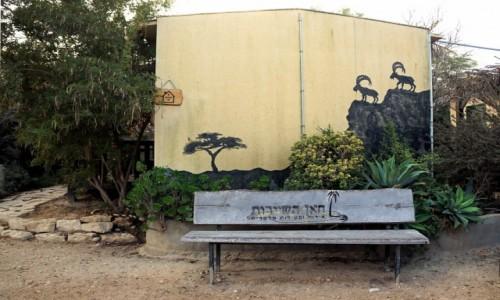 Zdjęcie IZRAEL / Mitzpe Ramon / . / Ławeczka