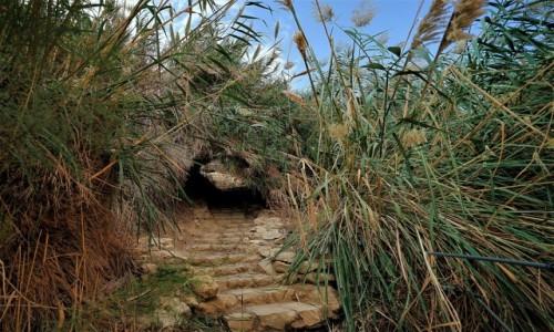 Zdjecie IZRAEL / Morze Martwe / Ein Gedi / Tunel w trzcinach