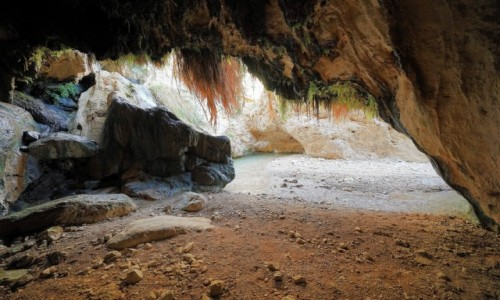 Zdjecie IZRAEL / Morze Martwe / Ein Gedi / Dodim Cave