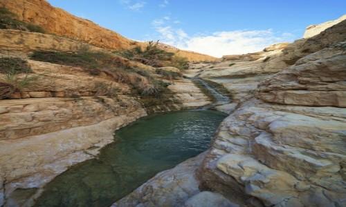 IZRAEL / Morze Martwe / Ein Gedi / Wodospadzik