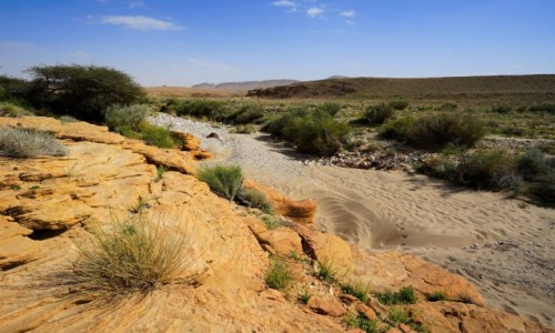IZRAEL / Negev / Mitzpe Ramon / W korycie wyschniętej rzeki