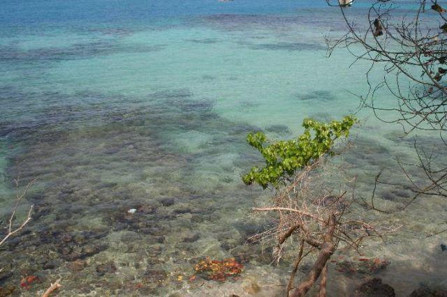 Zdjęcia: Ocho Rios, czysta woda, JAMAJKA