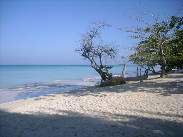 Zdjęcia: Montenego bay, Montenego bay, Inna Jamajka, JAMAJKA