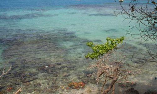 Zdjęcie JAMAJKA / brak / Ocho Rios / czysta woda