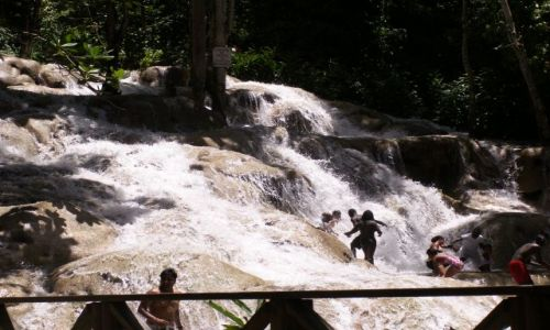 Zdjęcie JAMAJKA / Ocho Rios / duns river falls / black river safari