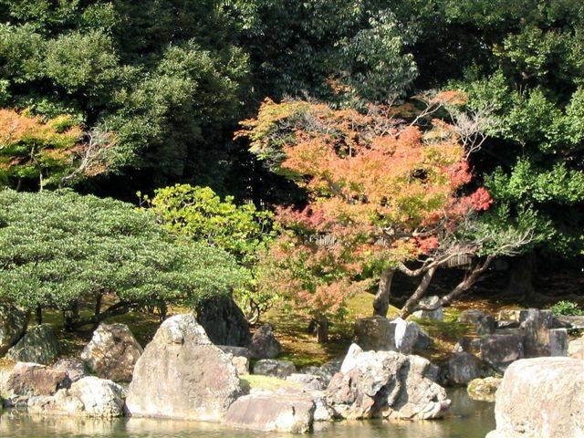 Zdjęcia: Kioto, Ogród Nijo-jo, JAPONIA