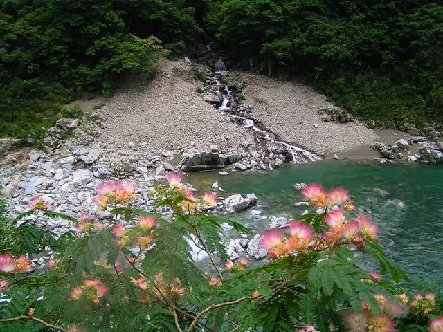 Zdj�cia: Iya Valley, -Shikoku, W�w�z Koboke-Oboke, JAPONIA
