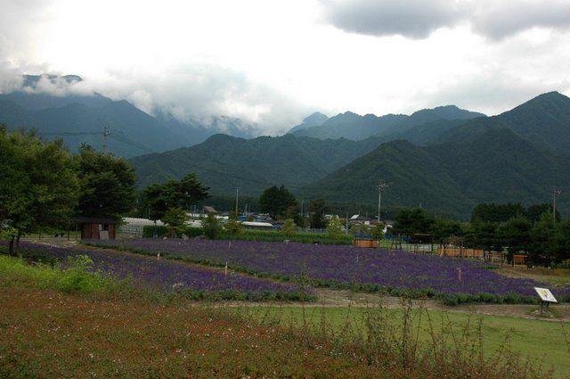 Zdjęcia: Azumino, Nagano, Azumino, JAPONIA