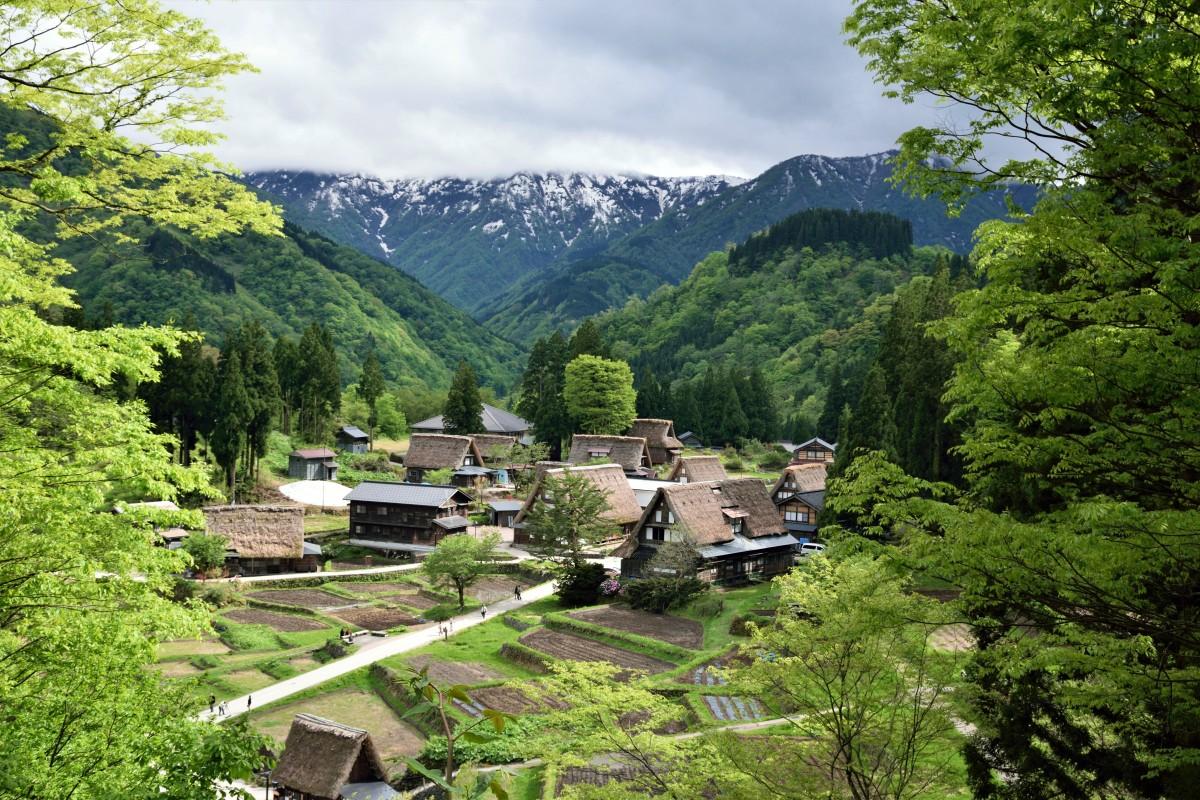 Zdjęcia: Ainokura Village, Region Gokayama, Takie widoki, JAPONIA
