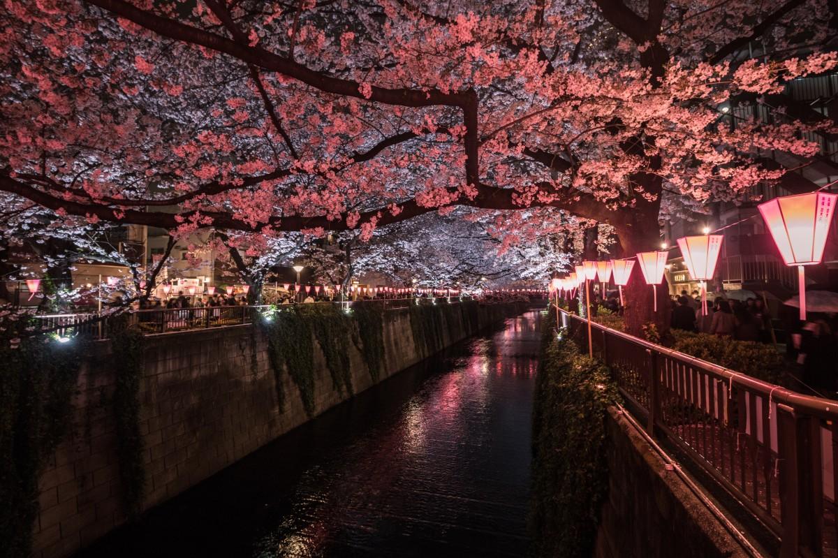 Zdjęcia: Tokio Naka-meguro, Tokio, Tokio Naka-meguro, JAPONIA