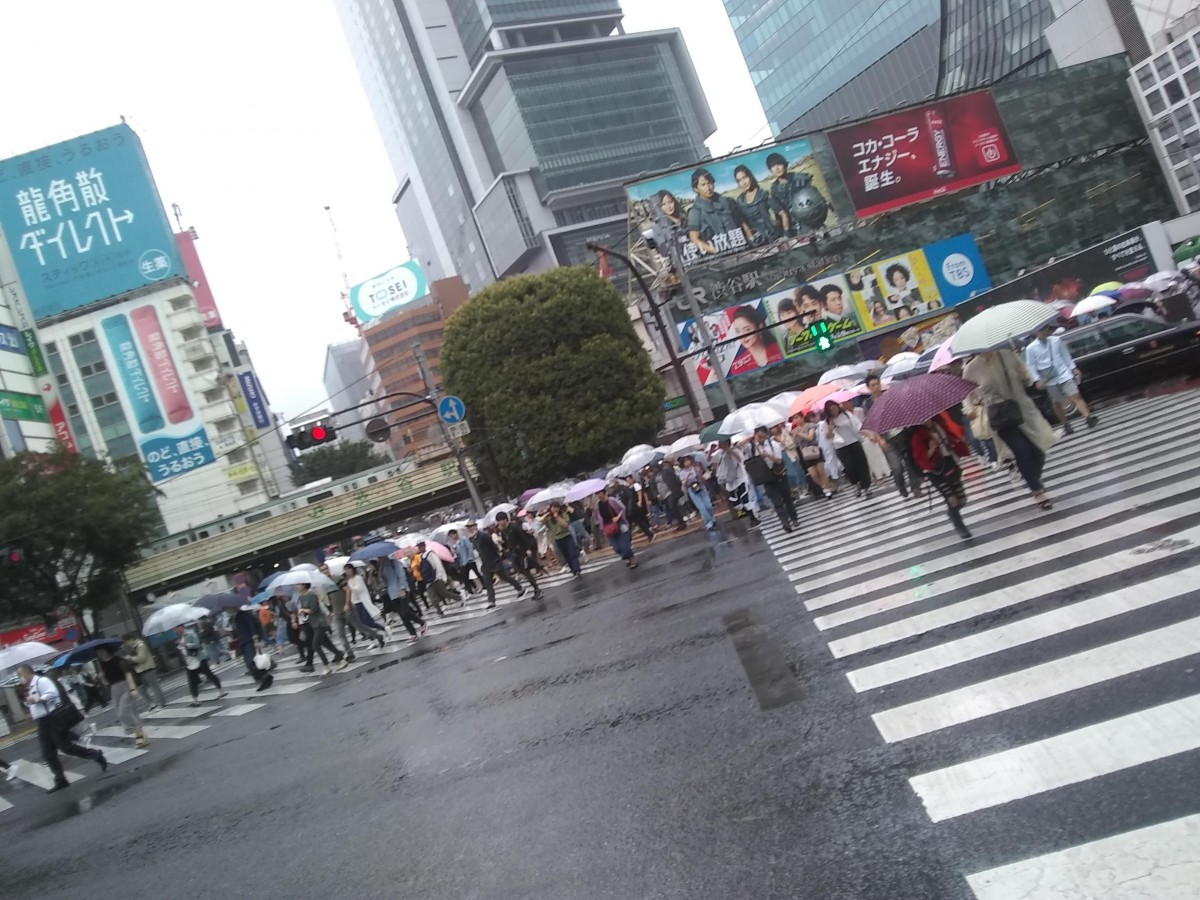 Zdjęcia: Shibuya, Tokyo, Shibuya, JAPONIA