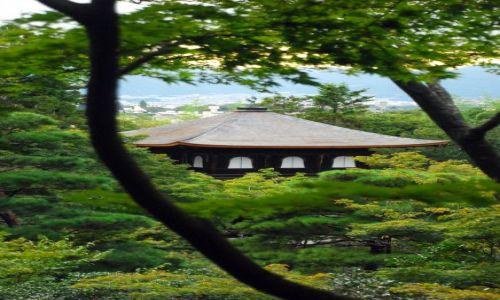 Zdjecie JAPONIA / Kioto  / Temple  / świątynna spokojność