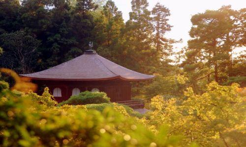 Zdjecie JAPONIA / Kioto  / Temple  / spokój i moc.