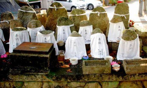 Zdjecie JAPONIA / Kioto  / temple / ubierzmy kamienie!