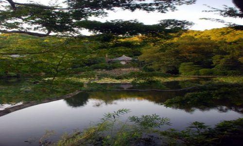 JAPONIA / Kioto  / temple / view