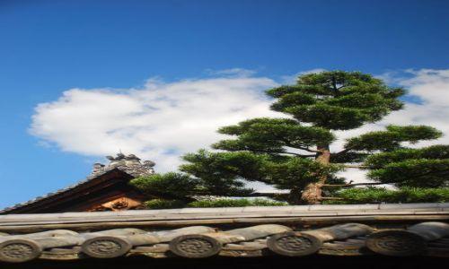 Zdjęcie JAPONIA / Kioto / temple / nad dachem