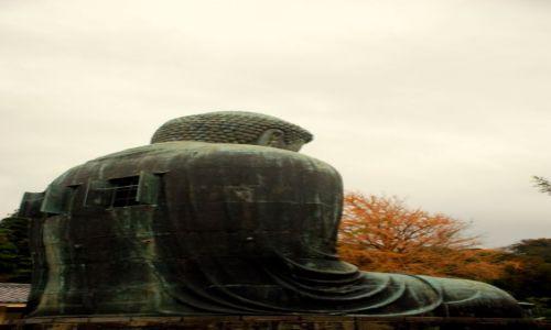 JAPONIA / Kamakura  / swiatynia Kotoku-in / na tyłach Buddy