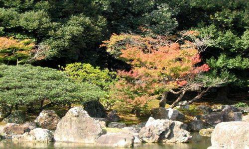 Zdjecie JAPONIA / brak / Kioto / Ogród Nijo-jo