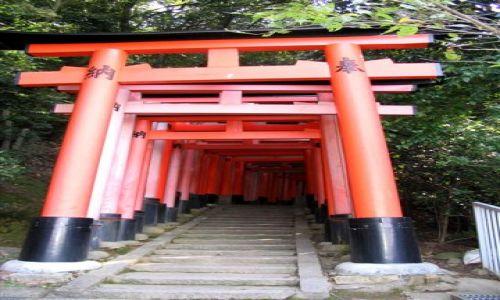 Zdjecie JAPONIA / brak / Fushimi / Fushimi Inari
