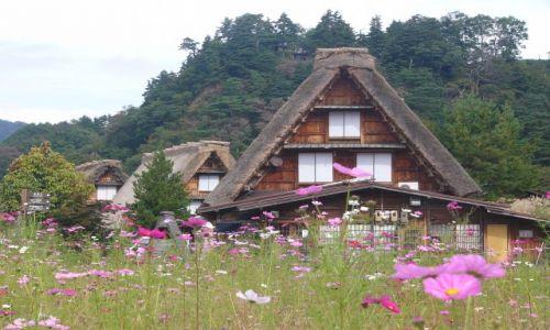 Zdjęcie JAPONIA / Honshu / Shirakawago / Japońskie strzechy II