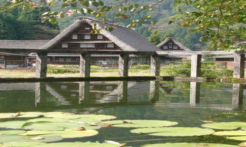 Zdjęcie JAPONIA / Honshu / Gokayama / Japońskie strzechy IV