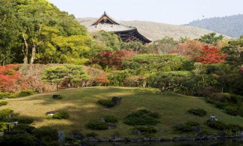 Zdjecie JAPONIA / Nara / Isuien Garden / jesiennie