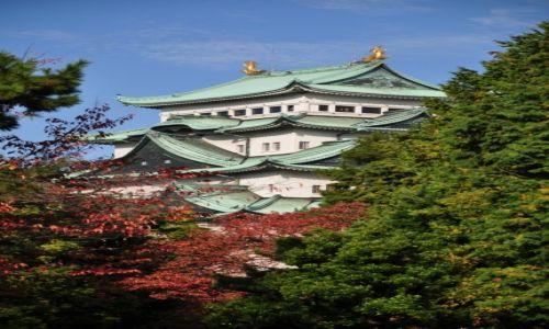 Zdjęcie JAPONIA / Honsiu / Nagoya / Zamek Nagoya