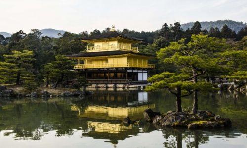Zdjecie JAPONIA / Tokio / Tokio / Wspomnienia z T